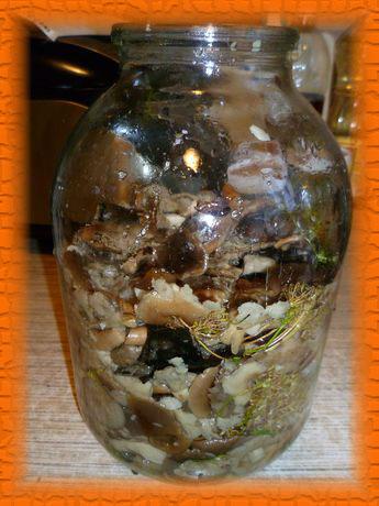 Выкладываем все грибы, перемежая со слоями зелени